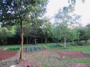 photo_id_194374300257f4ca808735b